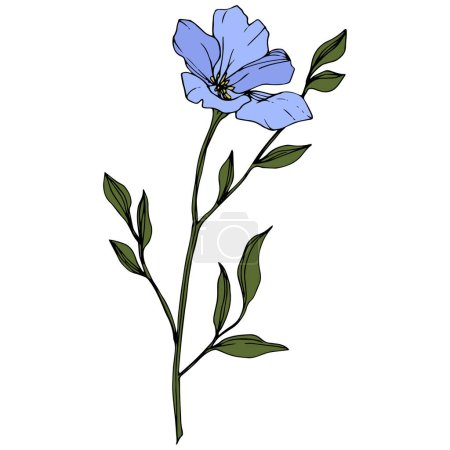 Beautiful blue flax flower with green leaves isolated on white. Engraved ink art.