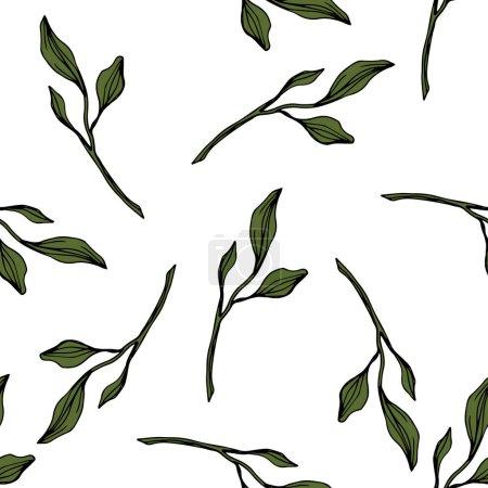 Ilustración de Vector. Hojas de color verde follaje floral de jardín botánico. Tinta grabado arte. Patrón transparente sobre fondo blanco. Textura impresión de papel pintado de tela. - Imagen libre de derechos