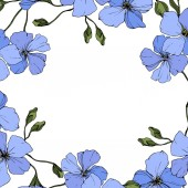 Vector Blue flax flowers with green leaves and buds isolated on white background Engraved ink art