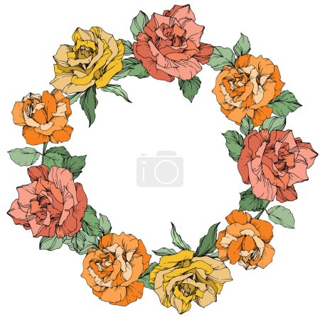 Vector rose flowers floral wreath on white background. Yellow, orange and coral roses engraved ink art.