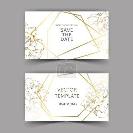 Vector. Golden rose flowers on cards. Wedding cards with golden borders. Thank you, rsvp, invitation elegant cards illustration graphic set. Engraved ink art.