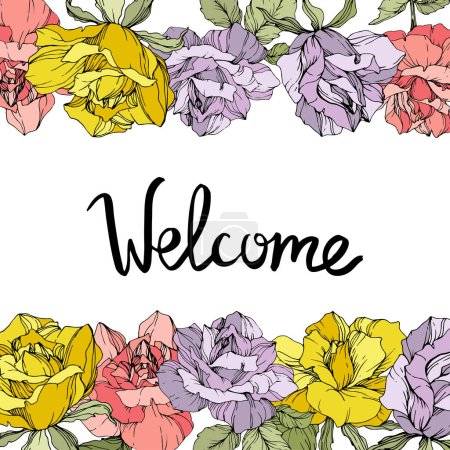 Illustration for Vector rose flowers floral borders on white background. Yellow, purple and pink engraved ink art. Welcome inscription - Royalty Free Image