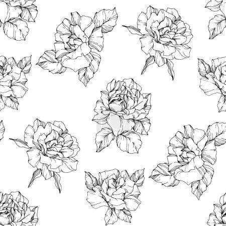 Ilustración de Vector de rosas. Blanco y negro había grabado arte de tinta. Patrón de fondo transparente. Fondo de pantalla de tela imprimir la textura sobre fondo blanco. - Imagen libre de derechos