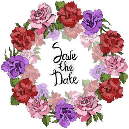 Illustration for Vector Roses floral wreath. Pink, red and purple rose flowers engraved ink art. Save the Date handwriting monogram calligraphy. - Royalty Free Image