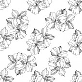 Vector Orchids Wildflowers isolated on white Black and white engraved ink art Seamless background pattern Wallpaper print texture
