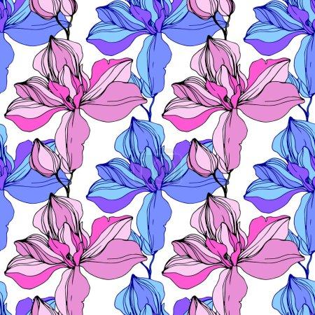 Illustration pour Vector rose et bleu orchidées. Fleurs sauvages isolés sur blanc. Art d'encre gravé. Motif de fond transparente. Papier peint texture impression. - image libre de droit