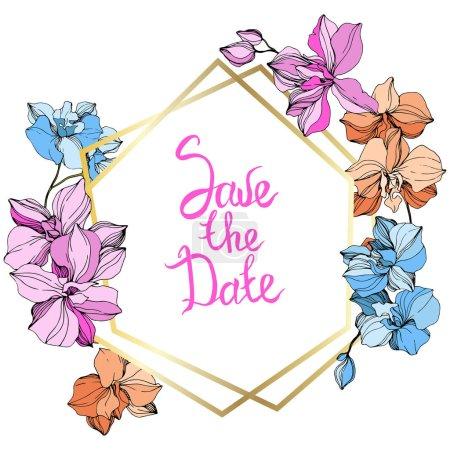 Illustration pour Orchidées de rose, orange et bleues de vecteur. Fleurs sauvages isolés sur blanc. Art d'encre gravé. Bordure de cadre floral avec «save the date» inscription - image libre de droit