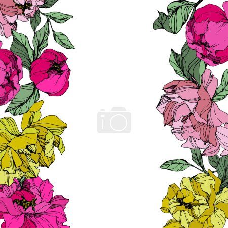 Illustration for Vector Pink and yellow peonies. Wildflowers isolated on white. Engraved ink art. Floral frame border - Royalty Free Image