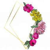 Vector Pink and yellow peonies Wildflowers isolated on white Engraved ink art Floral frame border