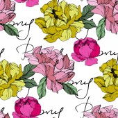 Vector Pink and yellow peonies Wildflowers isolated on white Engraved ink art Seamless background pattern Wallpaper print texture with 'peony' lettering