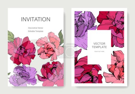 Illustration for Vector pink and purple peonies. Engraved ink art. Wedding background cards with decorative flowers. Invitation cards graphic set banner. - Royalty Free Image