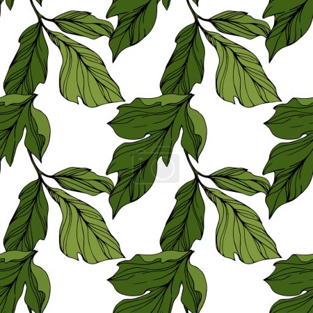 Illustration for Vector Green leaves isolated on white. Engraved ink art. Seamless background pattern. Wallpaper print texture. - Royalty Free Image