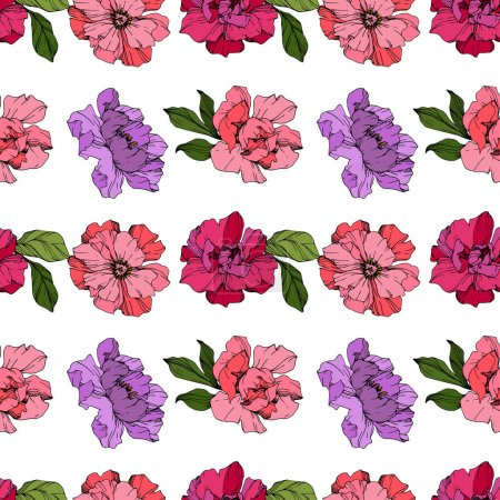 Illustration for Vector Pink and purple peonies. Wildflowers isolated on white. Engraved ink art. Seamless background pattern. Wallpaper print texture. - Royalty Free Image