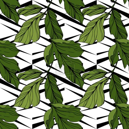 Illustration for Vector green leaves on ornamental background. Engraved ink art. Seamless background pattern. Wallpaper print texture. - Royalty Free Image