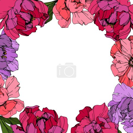 Illustration for Vector Pink and purple peonies. Wildflowers isolated on white. Engraved ink art. Floral frame border - Royalty Free Image