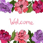 Vector Pink and purple peonies Wildflowers isolated on white Engraved ink art Floral frame border with 'welcome' lettering