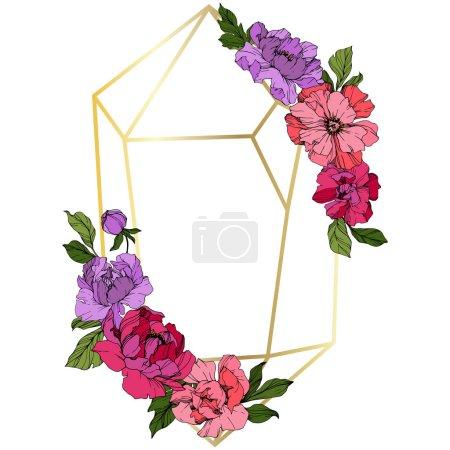Illustration pour Vector Pivoines roses et violettes. Fleurs sauvages isolées sur blanc. Encre gravée. Bordure du cadre floral - image libre de droit