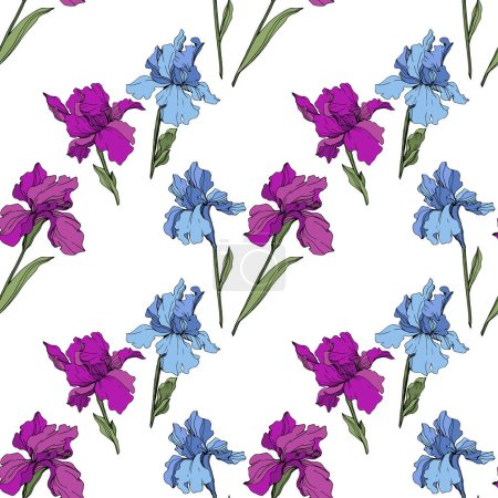 Illustration for Vector purple and blue irises. Wildflowers isolated on white. Engraved ink art. Seamless background pattern. Wallpaper print texture. - Royalty Free Image