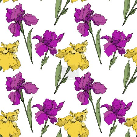 Illustration for Vector purple and yellow irises. Wildflowers isolated on white. Engraved ink art. Seamless background pattern. Wallpaper print texture. - Royalty Free Image
