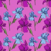 Vector purple and blue irises Wildflowers isolated on pink Engraved ink art Seamless background pattern Wallpaper print texture