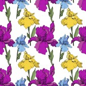 Vector purple blue and yellow irises Wildflowers isolated on white Engraved ink art Seamless background pattern Wallpaper print texture
