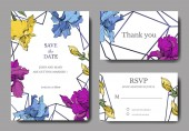 Vector irises Engraved ink art Wedding background cards with decorative flowers Thank you rsvp invitation cards graphic set banner