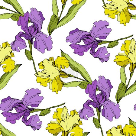 Illustration for Vector yellow and purple Irises. Colorful wildflowers isolated on white. Engraved ink art. Seamless background pattern. Wallpaper print texture. - Royalty Free Image