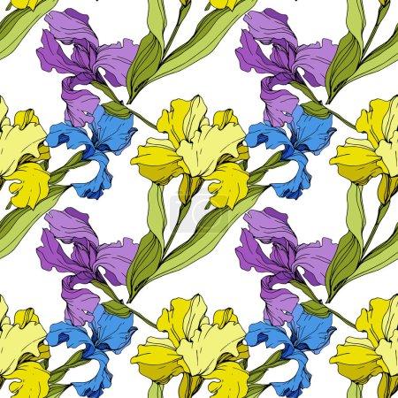 Illustration pour Vector jaunes, bleus et violets Iris. Fleurs colorées isolés sur blanc. Art d'encre gravé. Motif de fond transparente. Papier peint texture impression. - image libre de droit