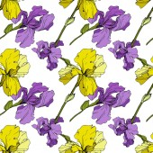 Vector yellow and purple Irises Colorful wildflowers isolated on white Engraved ink art Seamless background pattern Wallpaper print texture