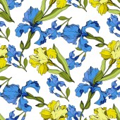 Vector yellow and blue Irises Colorful wildflowers isolated on white Engraved ink art Seamless background pattern Wallpaper print texture