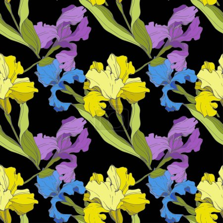 Illustration for Vector purple, blue and yellow Irises isolated on black. Colorful wildflowers. Engraved ink art. Seamless background pattern. Wallpaper print texture - Royalty Free Image