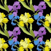 Vector purple blue and yellow Irises isolated on black Colorful wildflowers Engraved ink art Seamless background pattern Wallpaper print texture