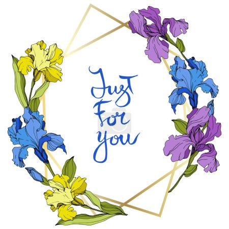 Illustration for Vector Purple, yellow and blue irises. Colorful wildflowers isolated on white. Engraved ink art. Frame border with 'just for you' lettering - Royalty Free Image