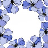 Vector Blue flax Wildflowers isolated on white Engraved ink art Floral frame border