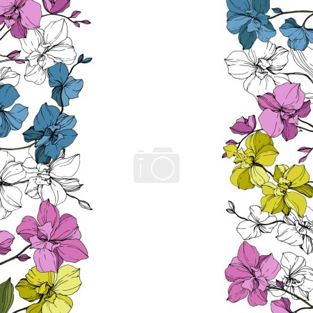 Illustration for Vector blue, pink and yellow orchids isolated on white. Frame border ornament with copy space. - Royalty Free Image