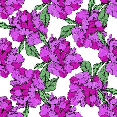 Illustration for Vector purple isolated peonies illustration on white background. Engraved ink art. Seamless background pattern. Fabric wallpaper print texture. - Royalty Free Image