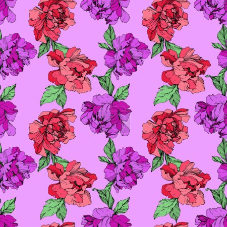 Illustration for Vector purple and living coral isolated peonies illustration on purple background. Engraved ink art. Seamless background pattern. Fabric wallpaper print texture. - Royalty Free Image