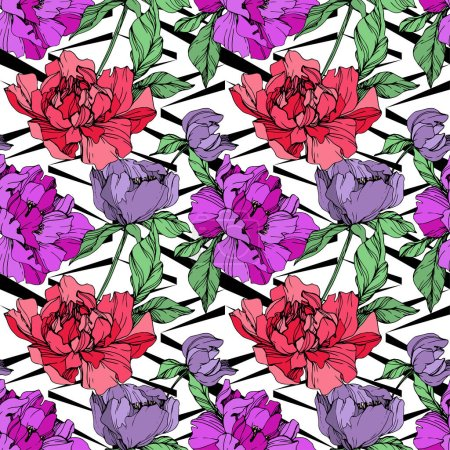 Illustration for Vector purple and living coral peonies illustration on white background. Engraved ink art. Seamless background pattern. Fabric wallpaper print texture. - Royalty Free Image