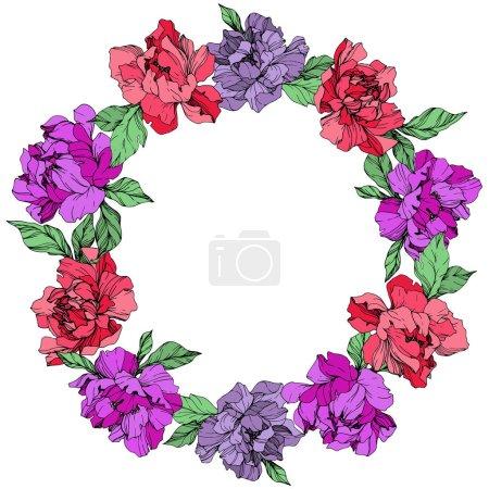 Illustration pour Vecteur vivant corail et violets pivoines isolés sur fond blanc. Art d'encre gravé. Ornement de bordure cadre avec espace copie. - image libre de droit