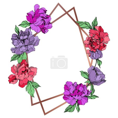 Illustration for Vector living coral and purple isolated peonies on white background. Engraved ink art. Frame border ornament with copy space. - Royalty Free Image
