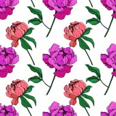 Vector purple and living coral isolated peonies illustration on white background Engraved ink art Seamless background pattern Fabric wallpaper print texture