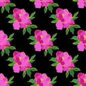 Vector purple isolated peonies illustration on black background Engraved ink art Seamless background pattern Fabric wallpaper print texture