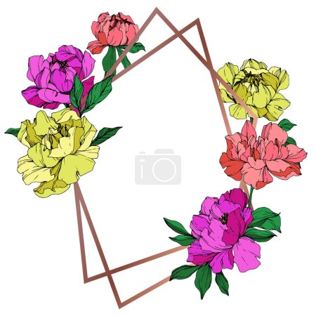 Illustration for Vector isolated living coral, purple and yellow peonies with green leaves on white background. Engraved ink art. Frame border ornament with copy space. - Royalty Free Image