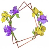 Vector yellow and purple isolated irises illustration Frame border ornament with copy space