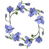 Vector Blue Flax floral botanical flower Wild spring leaf wildflower isolated Engraved ink art Frame border ornament square