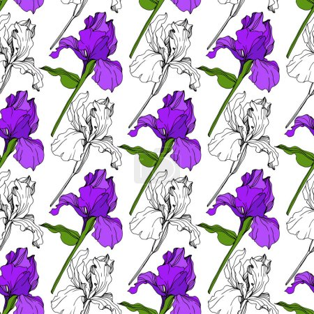 Illustration for Vector Purple Iris floral botanical flower. Wild spring leaf wildflower isolated. Engraved ink art. Seamless background pattern. Fabric wallpaper print texture. - Royalty Free Image