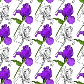 Vector Purple Iris floral botanical flower Wild spring leaf wildflower isolated Engraved ink art Seamless background pattern Fabric wallpaper print texture