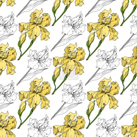 Vector Yellow Iris floral botanical flower. Wild spring leaf wildflower isolated. Engraved ink art. Seamless background pattern. Fabric wallpaper print texture.