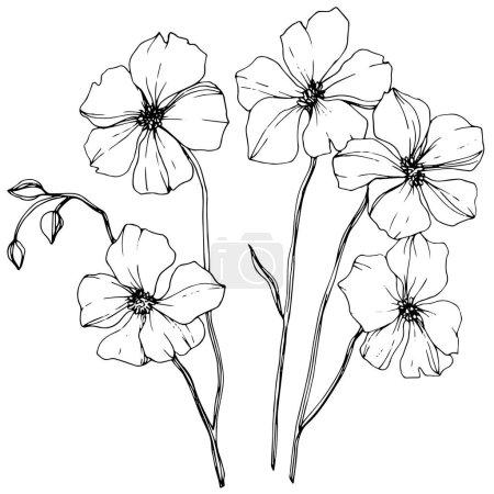 Wektor lnu botaniczny kwiat kwiatowy. Wiosna dzikiego wildflower liść na białym tle. Czarno-białe grawerowane sztuki atramentu. Element na białym tle lnu ilustracja na białym tle.
