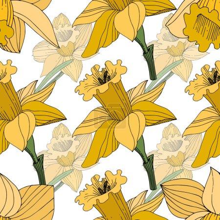 Illustration pour Vector jaune floral botanique fleur du Narcisse. Wildflower de feuille de printemps sauvage isolé. Art d'encre gravé. Motif de fond transparente. Impression texture de tissu papier peint. - image libre de droit